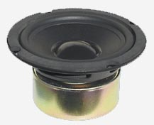Shielded Woofer GW5028S
